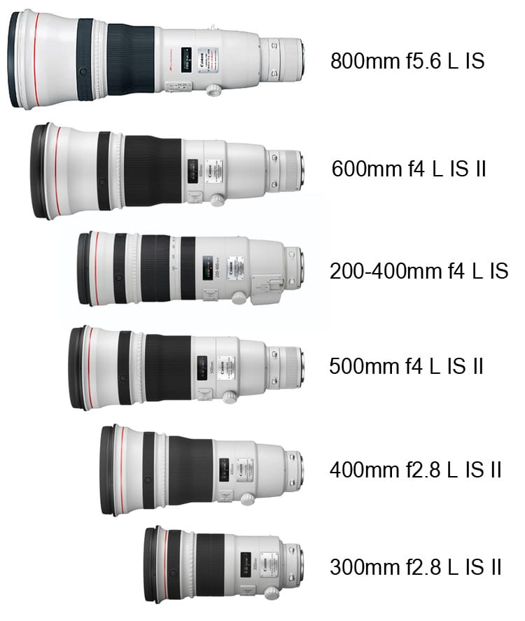 Canon 200-400 size