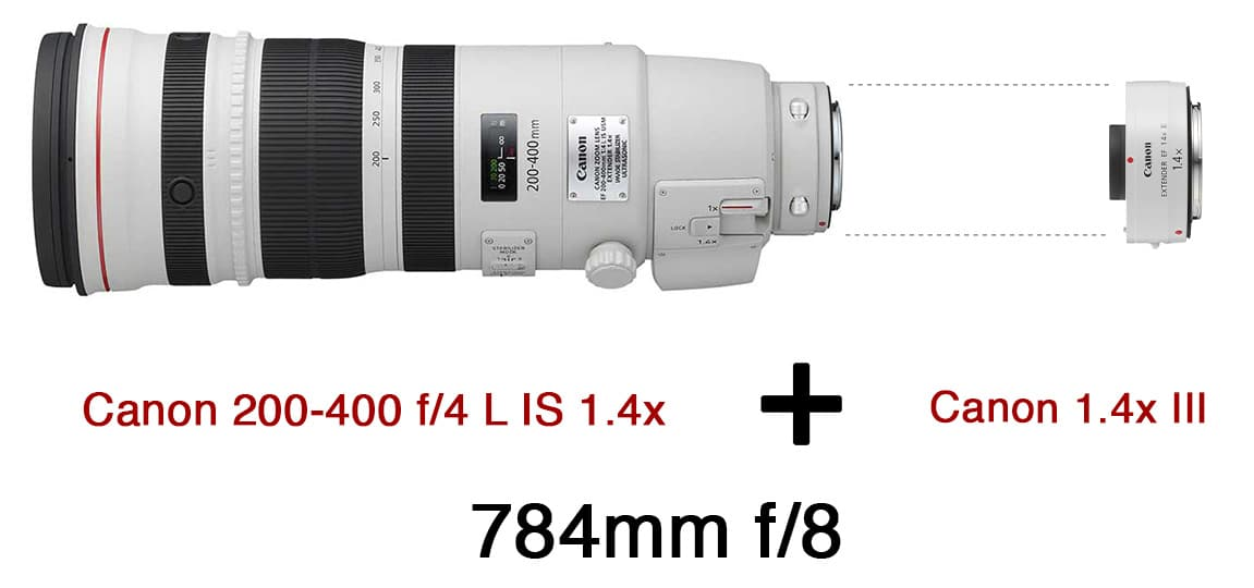 Adding A Second 1.4x Extender To The Canon 200-400 f/4 L IS