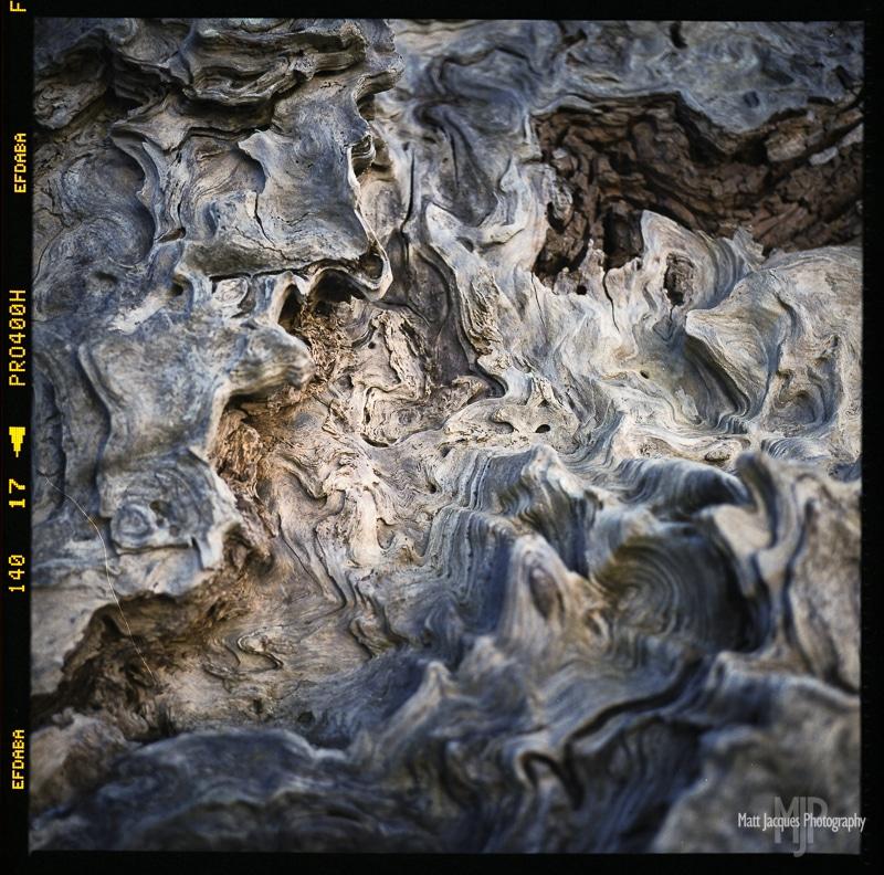 Driftwood Rollei
