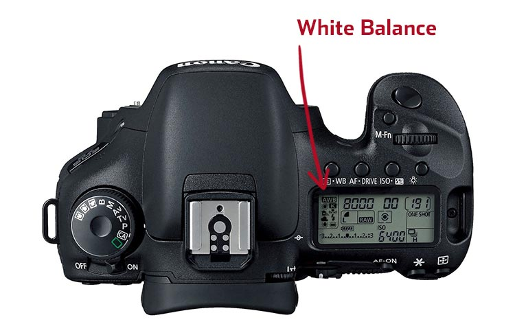 what-is-white-balance