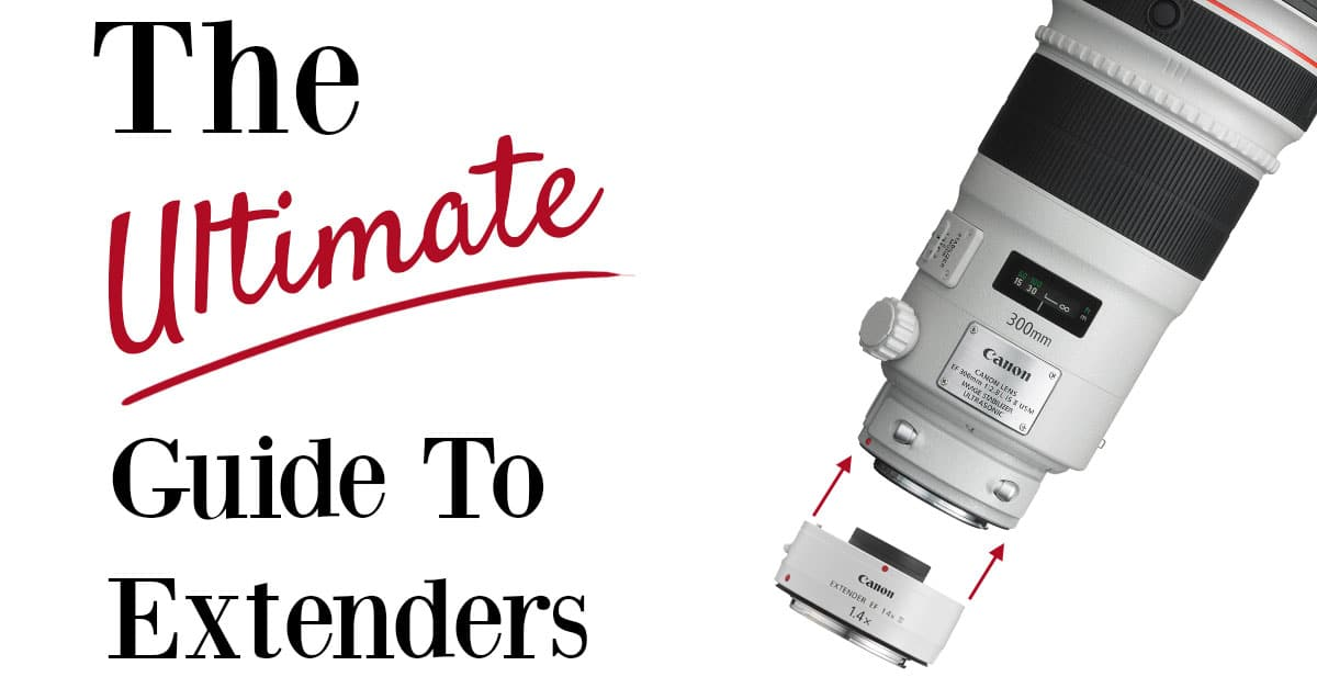 The Ultimate Guide To Extenders Or Teleconverters