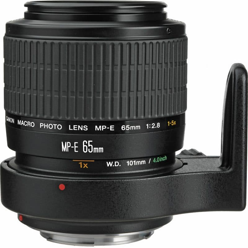 canon mp-e lens