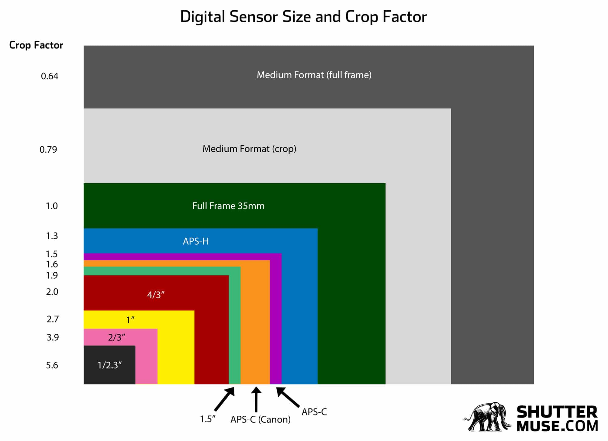 digital sensor size comparison