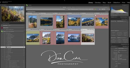 How to Add a Signature Watermark to Your Photos in Lightroom Classic
