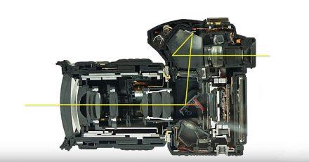 DSLR Autofocus Explained