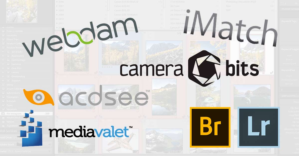 A Roundup of the Best Digital Asset Management Software
