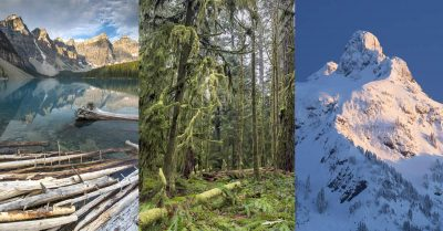 These Animations Show 4 Reasons Why You Need a Polarizing Filter!