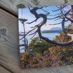 CanvasPop Photo Books Review