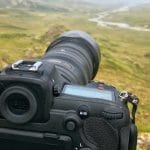 Nikon D500 and Nikkor 200-500mm f/5.6 – Nikon's Ultimate Wildlife Combo?