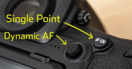 How to Set up Double Back Button Autofocus on Nikon Cameras for Quick AF Point Switching