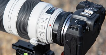 Canon Control Ring Mount Adapter EF-EOS R Review