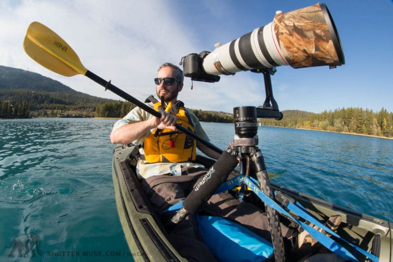 tripod for wildlife photography