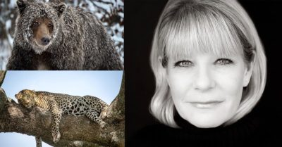 The Michelle Valberg Interview – On Wildlife Photography